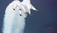 서울 ADEX, 경기도 상공에서 위용을 자랑하는 F-22 랩터
