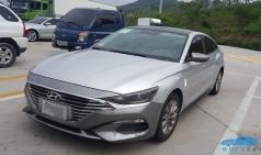 한국 도로 출몰한 중국 전용 현대차, '라페스타'