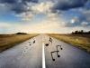 음악이 흐르는 도로, 멜로디 로드