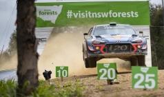 현대자동차 모터스포츠 WTCR 종합우승-WRC 준우승